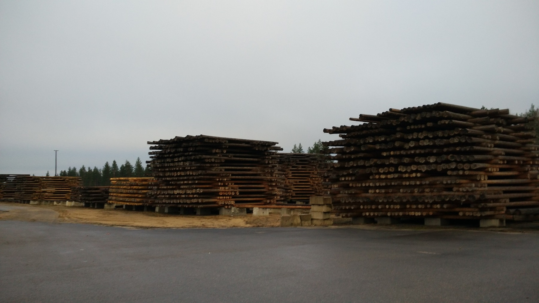 Wooden poles with creosote